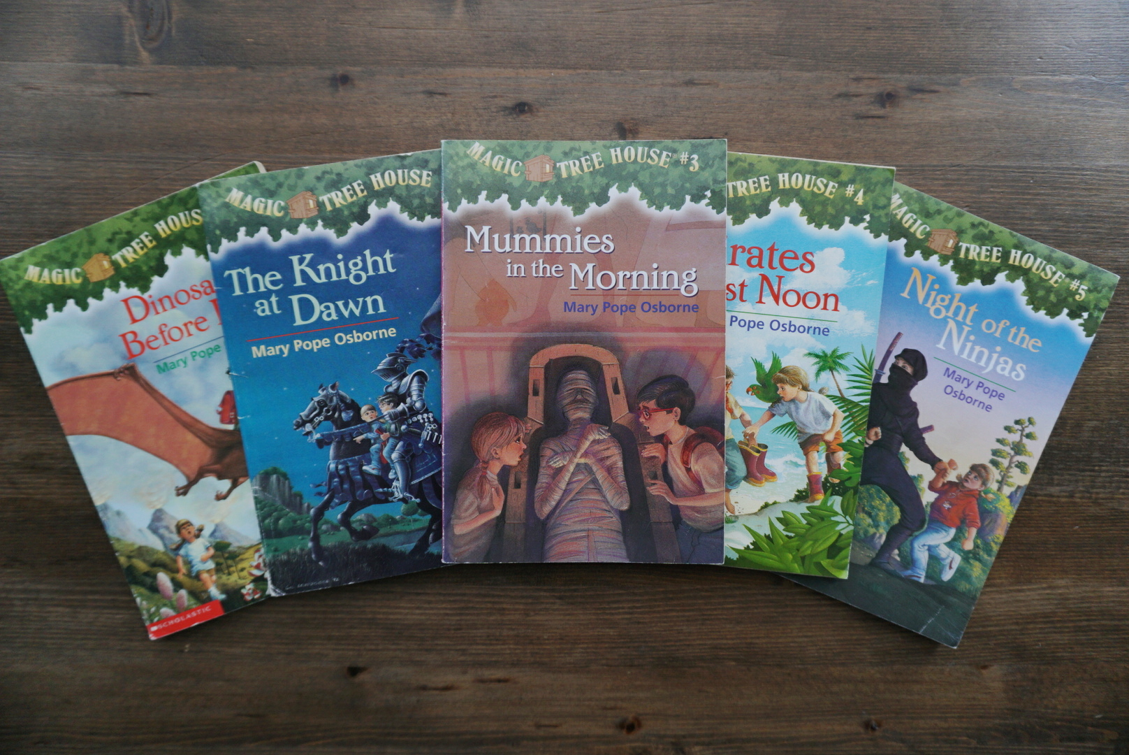 Magic Tree House Extension Activities Guide 1 Books 1 10