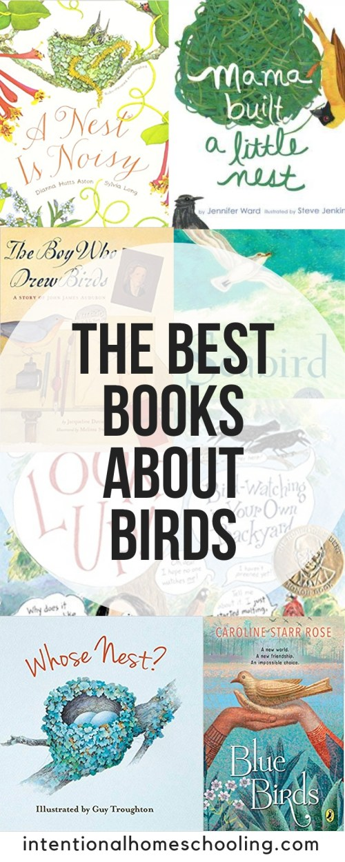 The best picture and chapter books about birds