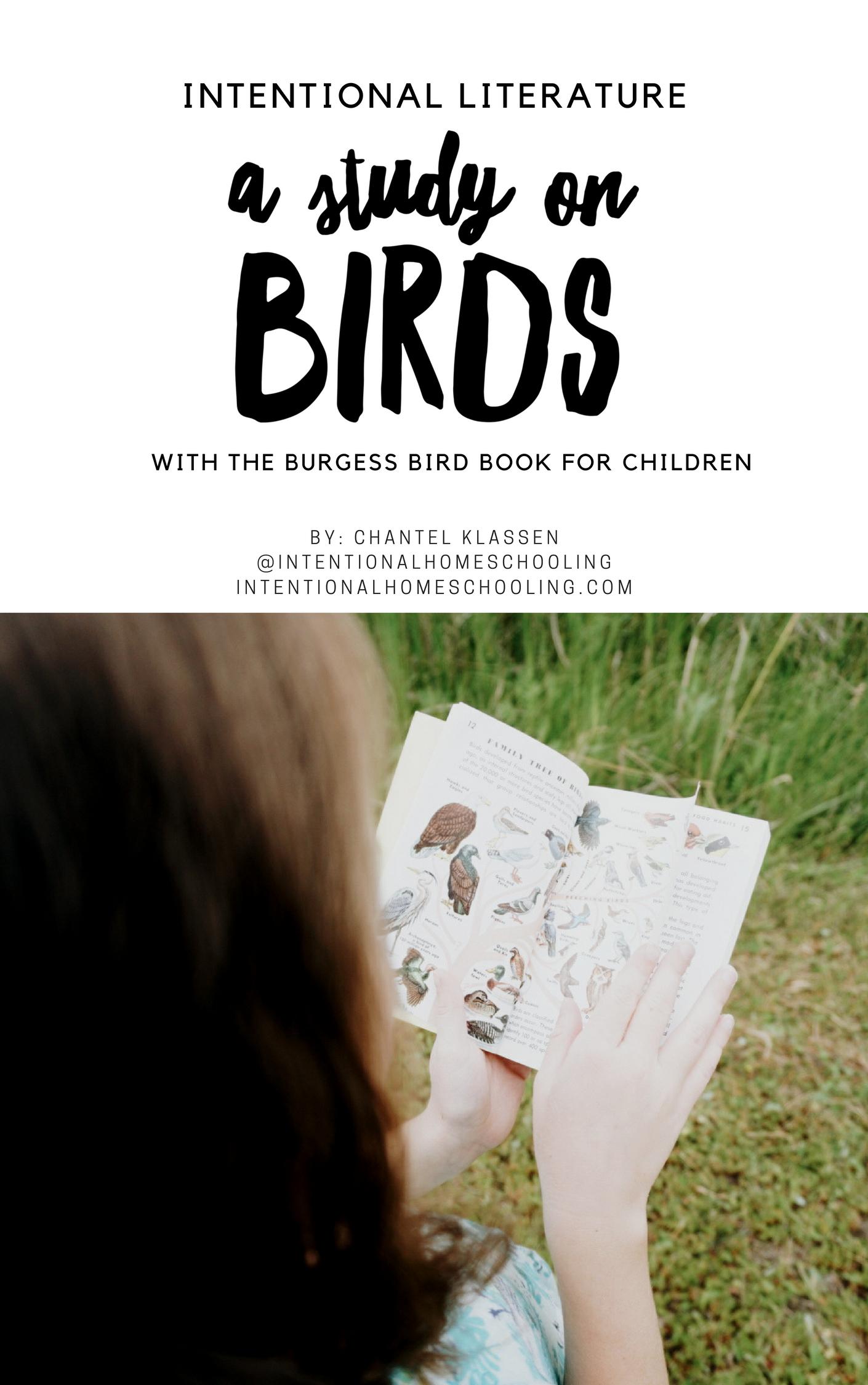 Bird Literature Guide - a literature unit study on birds using The Burgess Bird Book for Children
