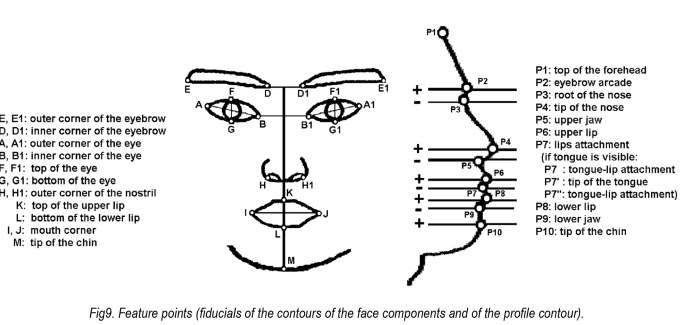 Detecting human facial expression by common computer vision techniques