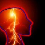 neurociencia y productividad