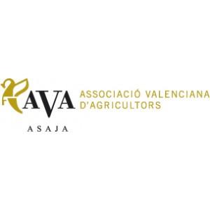 La valenciana es la única comunidad que desciende su superficie agrícola de regadío en la última década