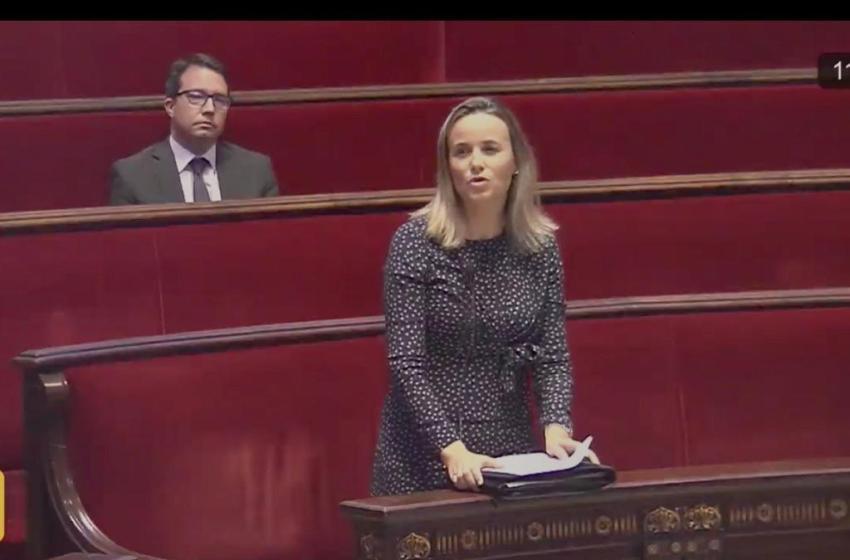 El PP pide en la comisión de Hacienda que se baje el IVA de las mascarillas FP2 y que se asuman responsabilidades políticas por las irregularidades en Valencia Activa