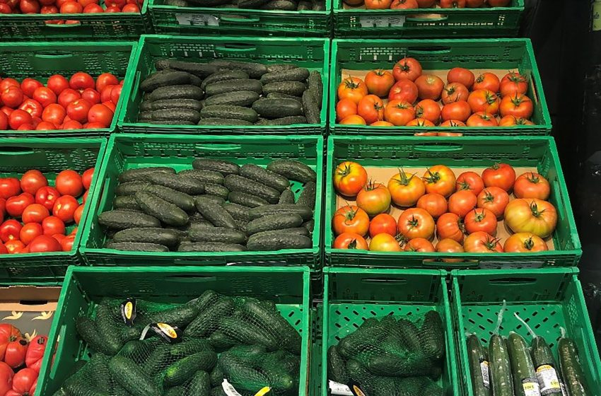 El pepino, producto de alta demanda en Mercadona