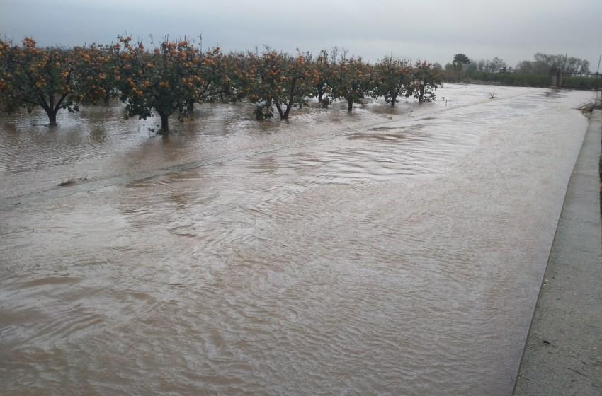 La gota fría provoca 62 millones de pérdidas de cosechas, sobrecostes y reparaciones de infraestructuras en la agricultura valenciana