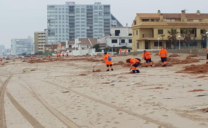 El ayuntamiento de Valencia refuerza la limpieza de las playas durante el fin de semana