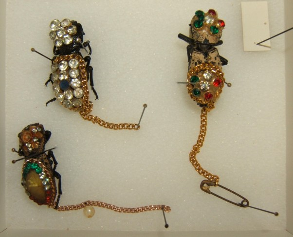 Insect Jewelry Maquech beetles