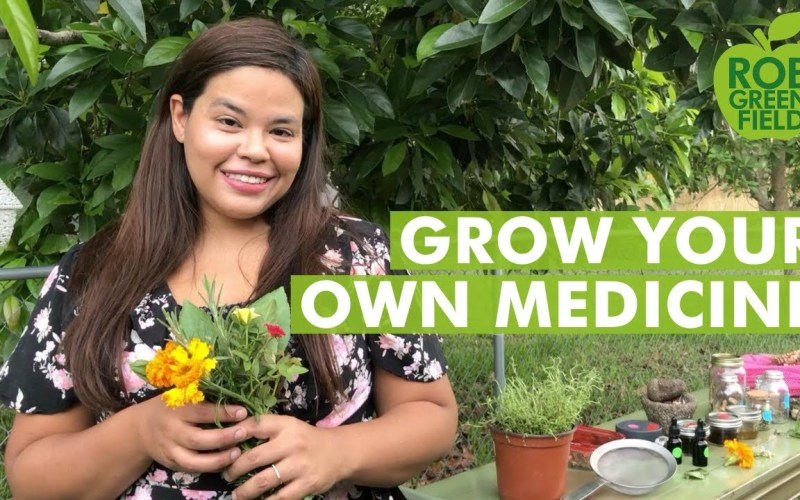 Grow Your Own Medicine – Growing Medicinal Plants in Your Backyard