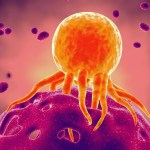 Newly Discovered Mechanism Helps Our Own Immune Systems Fight Cancer