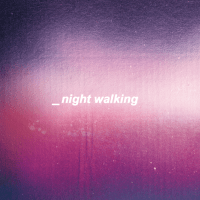 nicolas rouah // _night walking