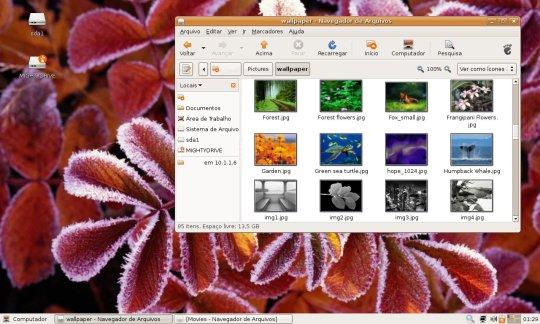 Desktop Ubuntu 7.04