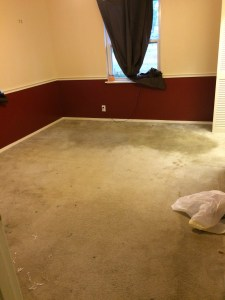 Carpet and Dilapidated Condition