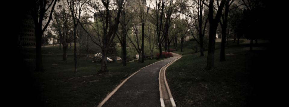 Interfaith Networking header-background-park-v3