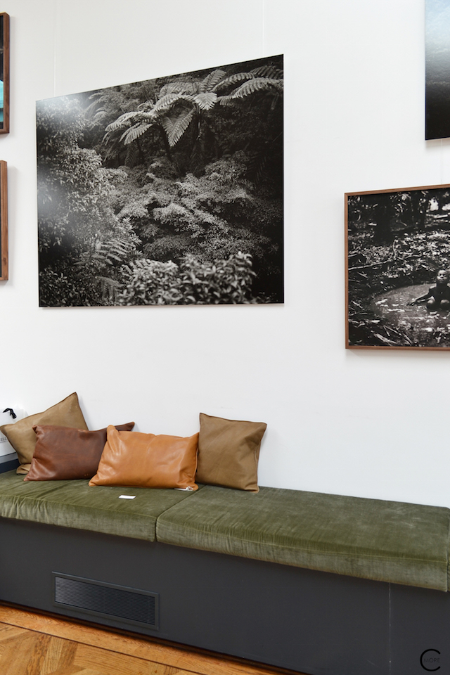 The Loft Amsterdam The Playing Circle August 2015 Green bench plants leather pillow black and white photo