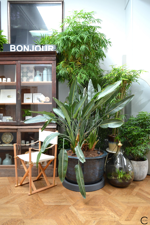 The Loft Amsterdam The Playing Circle August 2015 green urban garden indoor vintage cabinet styling inspiration
