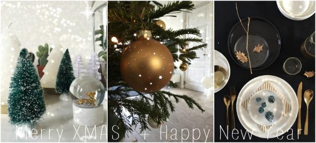 Merry Xmas and happy New Year 2016