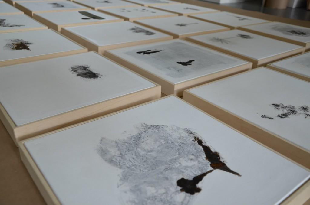 Serie de dibujos de petróleo crudo y pigmento mineral, de 30 x 30 cm. Fotografía: cortesía Blanca Botero.