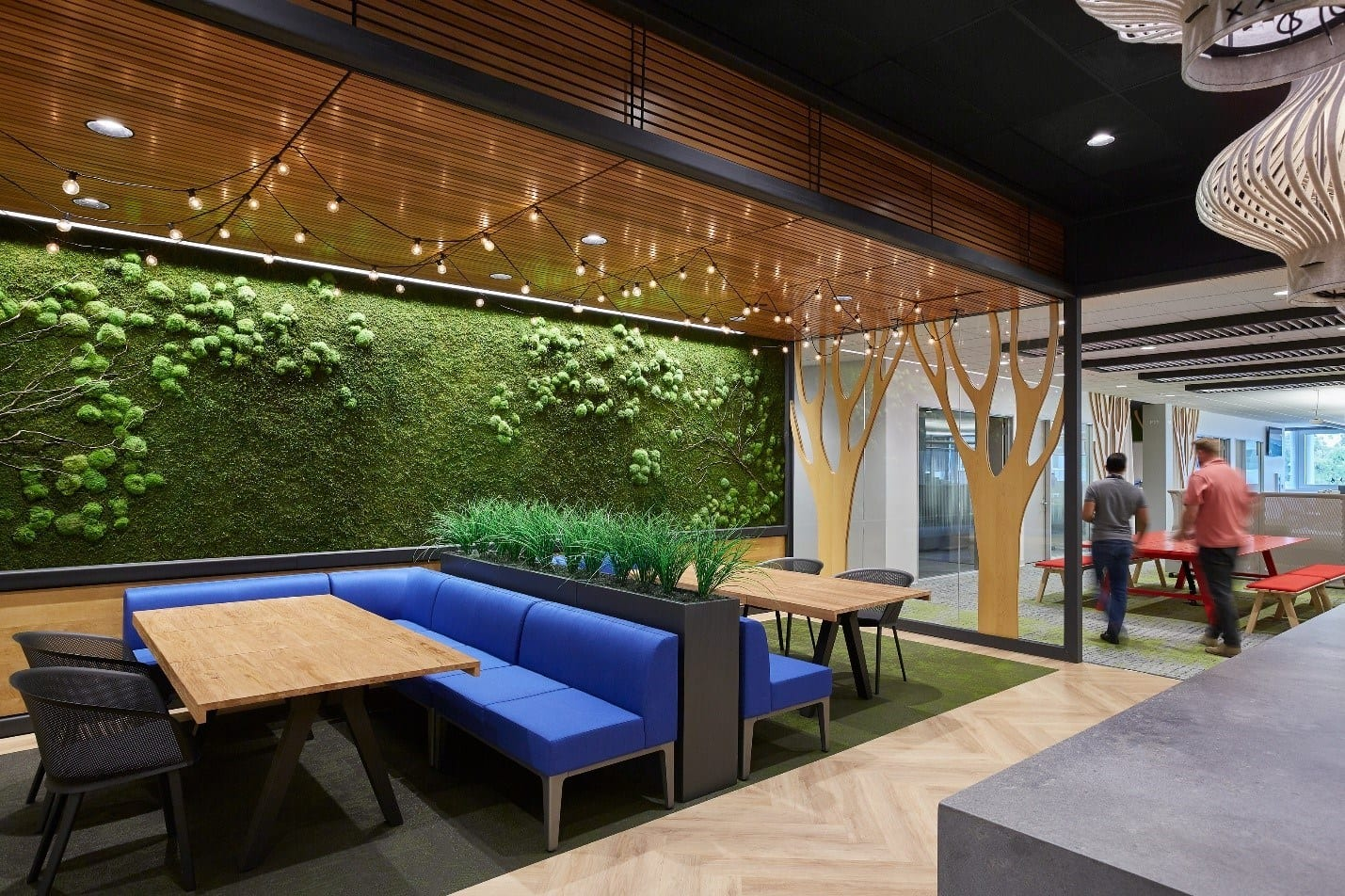 Biophilic elements in an employee cafe area
