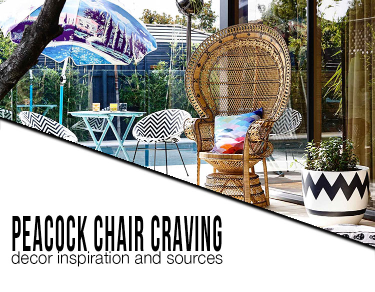 peacock chair craving decor inspiration and sources