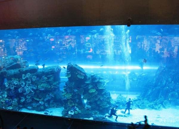 Top 5 Worlds Most Amazing Gigantic Aquariums