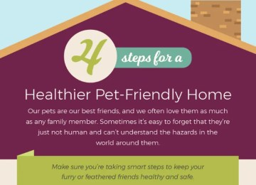 Pet Friendly Home IG
