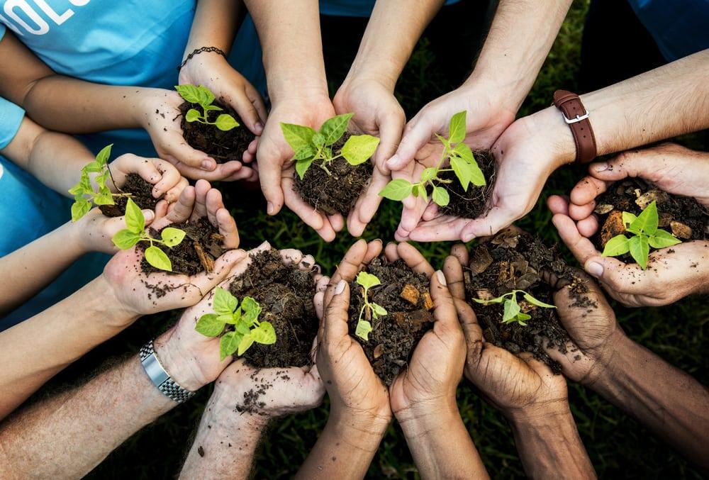 15 tips voor milieubewust en duurzaam tuinieren interiorqueen.nl woonblog