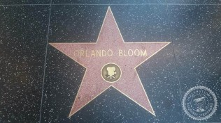 Hollywood (11)