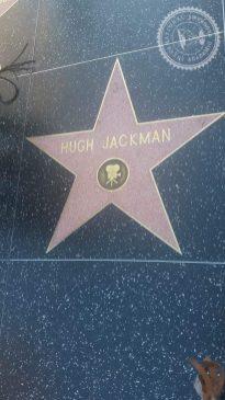 Hollywood (2)