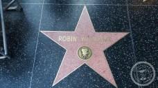 Hollywood (9)