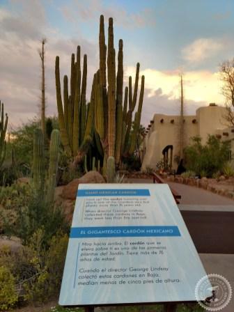 Colegios privados Arizona (150)