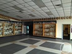Colegios privados Arizona (97)