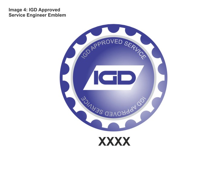 IGD approved gas detection service engineer