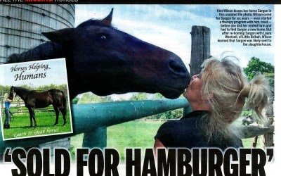 Stolen Horse Sold for Hamburger