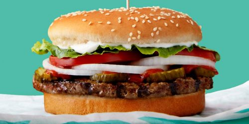 5cc6f52d16c65a1ede069699 960 480 1 500x250 3 factors are driving the plant based meat revolution as analysts predict companies like Beyond Meat and Impossible Foods could explode into a $140 billion industry