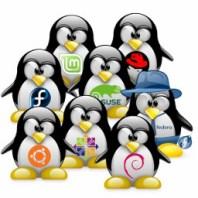 Mein Linux-Einstieg