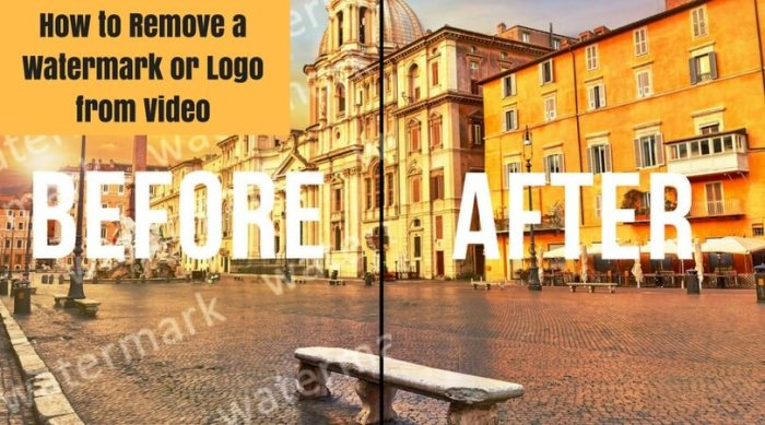 How to Remove a Watermark or Logo from Video