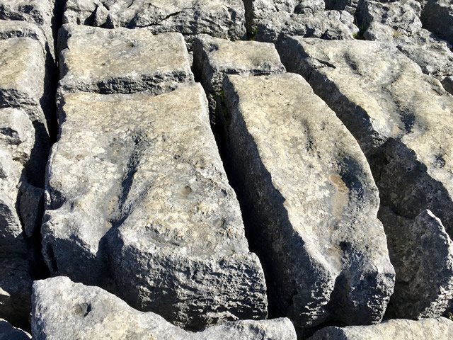 an image of a limestone pavement