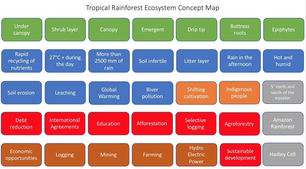Tropical Rainforest Concept Map Key Words