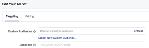 custom audience field in targeting