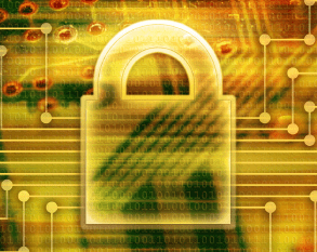 Rough Guide to IETF 91: DNSSEC, DANE and DNS Security