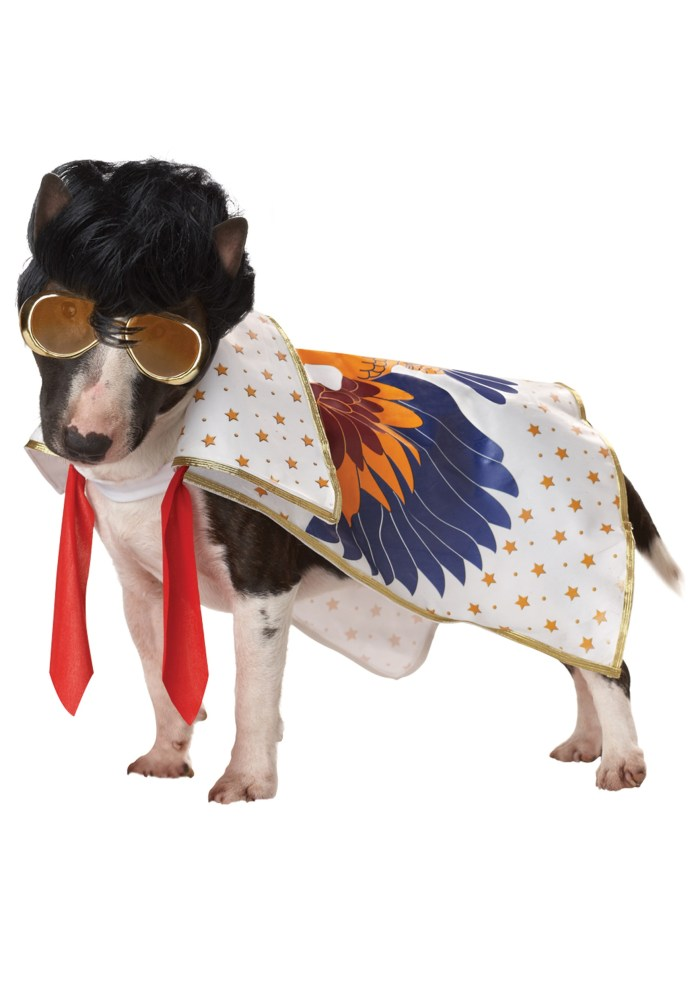 Dogs dressed like famous people