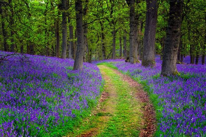 scotland-landscape-photography-15.jpg
