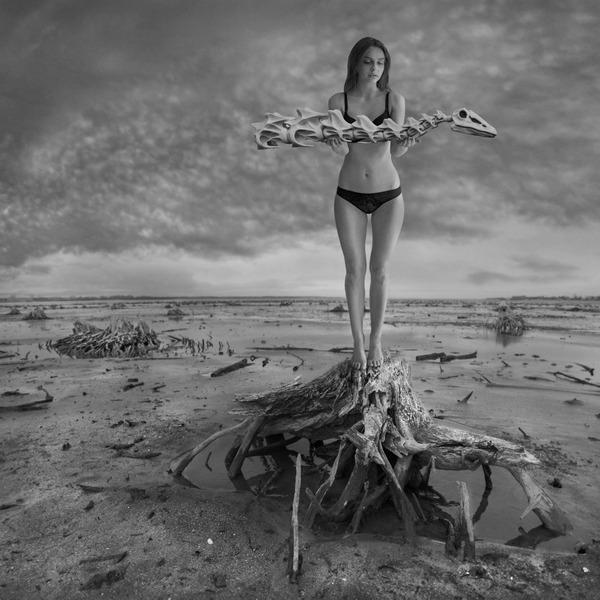 Photo_manipulation_by_Dariusz_Klimczak (9)