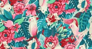 Illustrations_and_Pattern_Design_by_Lidija_Paradinovic_Nagulov (5)