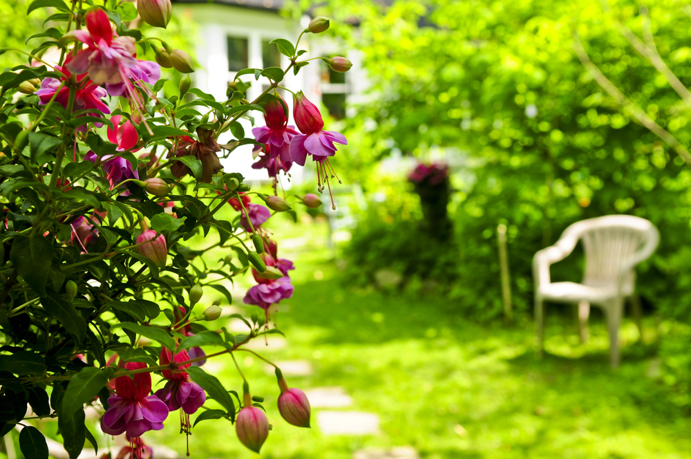 7 Landscaping Mistakes That Could Ruin Your Home's Curb Appeal