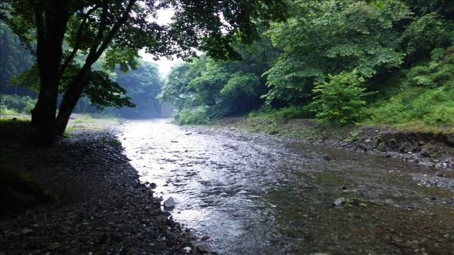 Sainokuni Camping Village