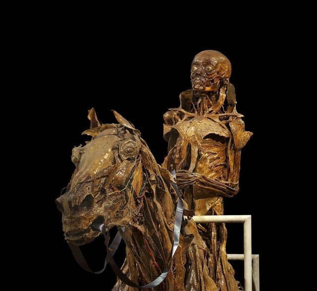Take a tour of the Bodies Exhibition