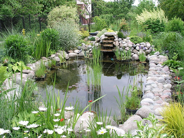 Where You Can Find the Best Pond Pumps.