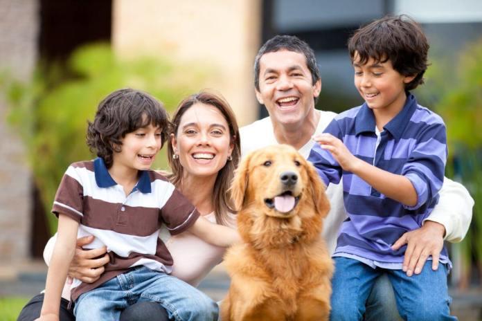Buy a family pet