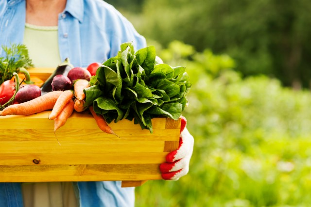 Diet and Nutrition_for seniors